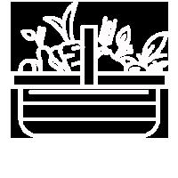 clean_food-200x200